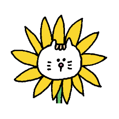 Kawaii White Kitty Summer