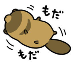 Raccoon dog & Fox sticker #11659924
