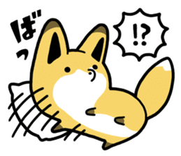 Raccoon dog & Fox sticker #11659925