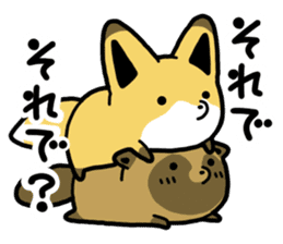 Raccoon dog & Fox sticker #11659939