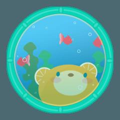 Aquarium bear!