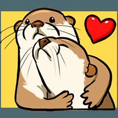 A Cute otter