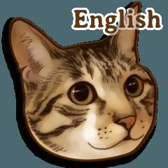 PENNE and CORNET Vol.2 -English-