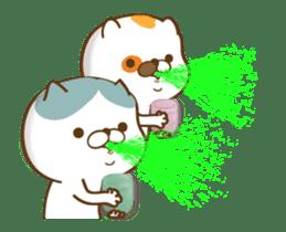 Cat animated sticker sticker #11753285