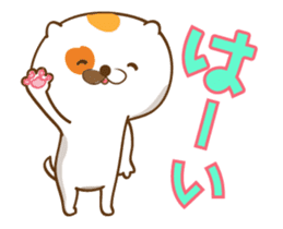 Cat animated sticker sticker #11753290