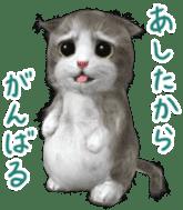Animation Mofu Kitten Mofuu sticker #11754285