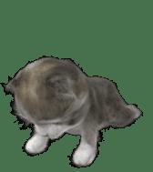 Animation Mofu Kitten Mofuu sticker #11754286
