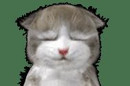 Animation Mofu Kitten Mofuu sticker #11754302