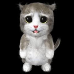 Animation Mofu Kitten Mofuu