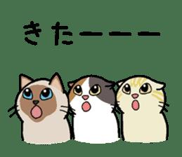 Summer, Orin and Kinaco and Myasuke sticker #11801937