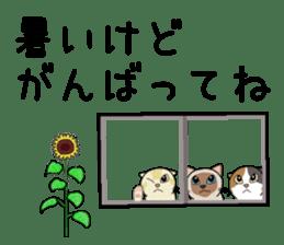 Summer, Orin and Kinaco and Myasuke sticker #11801951