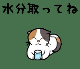 Summer, Orin and Kinaco and Myasuke sticker #11801958