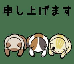 Summer, Orin and Kinaco and Myasuke sticker #11801964