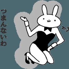 real bunny girl3