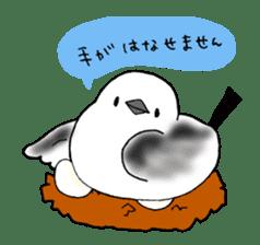 Bird horsetail sticker #11855277