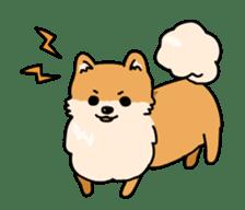 Cute Pomeranian Animation sticker #11857938