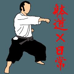 Japanese-budo taido