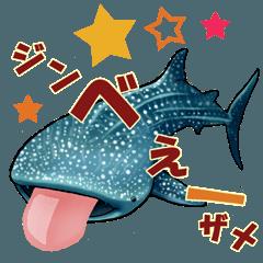 35種のサメギャグスタンプ。