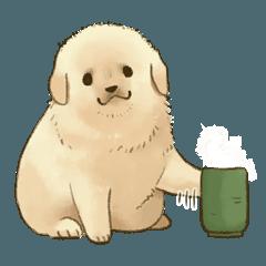 The Golden Retriever puppy!!2