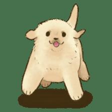 The Golden Retriever puppy!!2 sticker #11978752