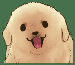 The Golden Retriever puppy!!2 sticker #11978753