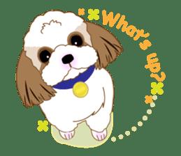 Energetic Shih Tzu sticker sticker #11979922