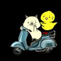 Move roki&chick