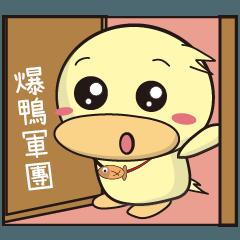 BAO duck (good Morning)