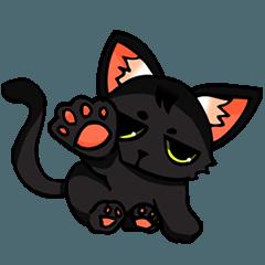 Kurofu cat