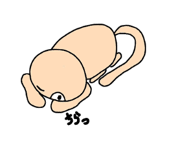 daily close to the cat cat sticker #12004340