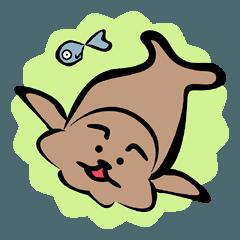 Harbor seal&fish