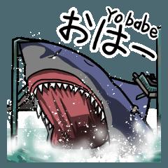 Attack of Sharks!!