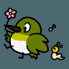 Jiroko & Momi