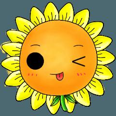 I'm Mr. Sunflower