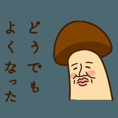 Mr.mushroom 2 !