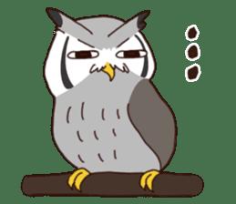 Kakegawa Kachouen birds feelings sticker #12193480