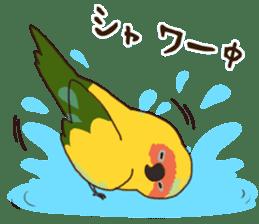 Kakegawa Kachouen birds feelings sticker #12193497