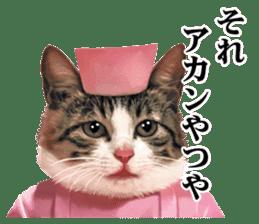 NAMENEKO2 sticker #12193754