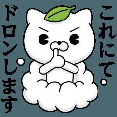 Cat DX Showa