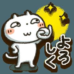 Simple white cat 11