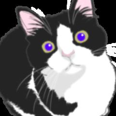Lovely kitten animation sticker