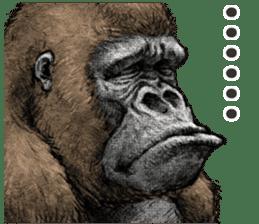 Gorilla gorilla 3 sticker #12354136