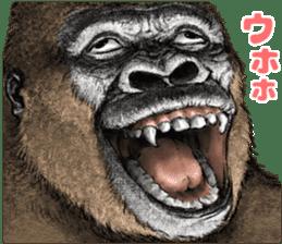 Gorilla gorilla 3 sticker #12354143