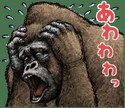 Gorilla gorilla 3 sticker #12354164
