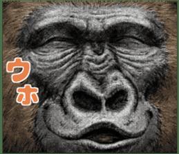 Gorilla gorilla 3 sticker #12354165