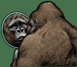 Gorilla gorilla 3 sticker #12354168
