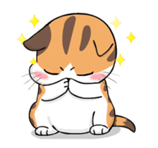 Soidow Cat Animated(Eng) sticker #12363059