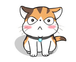 Soidow Cat Animated(Eng) sticker #12363062