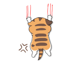 Soidow Cat Animated(Eng) sticker #12363067