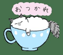 My Ragdoll Cat sticker #12369698